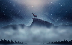 christmas_deer_snowfall (rodrigodiastome40) Tags: