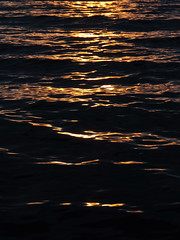 Black and Gold Waves (Tina Schroeder) Tags: water lake wave sunset light shadows darkness gold abstract detail nature