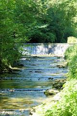 Pour faire passer la canicule ! 1 (Jean-Daniel David) Tags: rivière arnon suisse suisseromande nordvaudois jura forêt eau nature chute feuille feuillage arbre vert verdure reflet fabuleuse