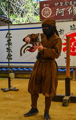 People teaching at the Ninja School (phuong.sg@gmail.com) Tags: defeat ancient art asian attack black combat courage culture defence discipline education fight fighter fighting fit focus history honor house japan japanese judo kendo kimono knight kyoto loyalty martial master meditating museum ninja people samurai school sensei skill sport sword tatami tokyo tradition traditional training uniform warrior way wear