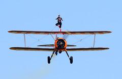 Stearman of The Flying Circus Wingwalking Team (rac819) Tags: oldwarden shuttleworthcollection shuttleworthtrust ukairdisplays family display stearman wingwalker extremeaerobatics aerobatics