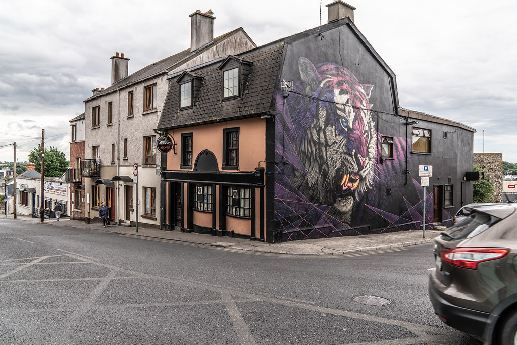 EXAMPLES OF STREET ART [URBAN CULTURE IN WATERFORD CITY]-142321