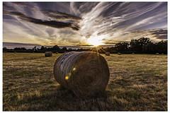 sunset hay bales (iantanky) Tags: sun sunset glow orange landscapr clouds sky outdoors noone