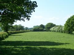 Wheaton Aston (ERIK THE CAT Struggling to keep up) Tags: wheatonaston mottymeadows landscape staffordshire