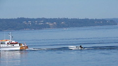 40 - Aug 9, 2018 - vessel 'Calista' (viewd from Pt Defiance Boat House) (kazuhikogriffin) Tags: calista ptdefiance