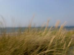 Zen (falkmo) Tags: grün green abstrakt abstract meer beach strand water ocean harbour hafen gelb yellow blau blue dune düne himmel sky blur motion contemplation zen