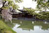 """Kyoto 154 • <a style=""""font-size:0.8em;"""" href=""""http://www.flickr.com/photos/36838853@N03/39695596040/"""" target=""""_blank"""">View on Flickr</a>"""