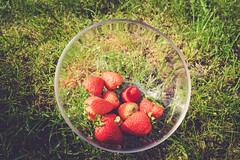 Strawberry (Tiph Haine) Tags: sony alpha 7ii sonyalpha7ii sonyfrance fullframe pleinformat 28mm primelense sony28mf2 projet52 52weekprojectphotography amateur lightroom tpix french français france lorraine moselle grandest strawberry