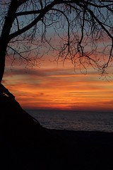 lake michigan (reilynsanderson) Tags: water sea tree lake ocean sunset sun red blue michigan midwest lakemichigan