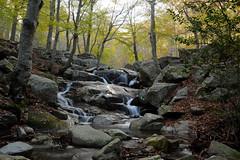 Riera de Passavets (Hachimaki123) Tags: montseny parcnaturaldelmontseny paisaje landscape río rio river riera riu rieradepassavets waterfall cascada