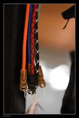 _8107726 mf copy 02 (Michael Fleischer) Tags: bokeh detail straps contrast colour sigma 105mm f14e art