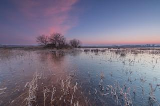 Sonnenaufgang Borgfelder Wümmewiesen nach dem Frost