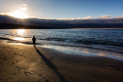 A5D_7919 Watching the Fog Roll In (foxxyg2) Tags: fog mist beach sea ocean pacificocean coast monterey california sunset reflections shadows