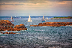Sail Away (nixter) Tags: massachusetts away bay island marblehead ocean rocks sail sailaway sailboats sailing sun water
