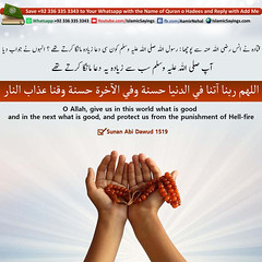 Supplication-for-Good (aamirnehal) Tags: quran hadees hadith seerat prophet jesus moses book aamir nehal love peace quotes allah muhammad islam zakat hajj flower gift sin virtue punish punishment teaching brotherhood parents respect equality knowledge verse day judgement muslim majah dawud iman deen about son daughter brother sister hadithabout quranabout islamabout riba toheed namaz roza islamic sayings dua supplications invoke tooba forgive forgiveness mother father pray prayer tableegh jihad recite scholar bukhari tirmadhi