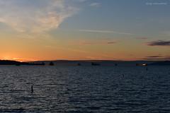 English Bay Sunset - 2 (Average Photographer 1992) Tags: landscapephotography landscape landscapes sunset sunsets longexposure nikon nikonphotographer nikonphotography nikonuser nikonphoto nikond7200 nightphoto night nightphotography nighttime sunsetphotography water waters waterscape waterscapes mountain mountains englishbay beach beaches vancouver vancouverbc vancouvercanada vancouveratnight britishcolumbia britishcolumbiacanada canada sigma150600mm sigma ship ships