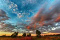 IMG_9262 (serj k.) Tags: sky sunset clouds field pano panorama 7d mark ii sigma 816mm