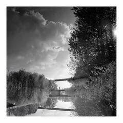 industrial romantic (rcfed) Tags: hasselblad mediumformat film trix tanol development cloud sun tree industrial romantic reflection