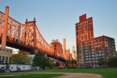 Roosevelt Island, 10.11.16 (gigi_nyc) Tags: sunrise rooseveltisland nyc newyorkcity queensborobridge