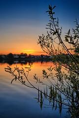 Calm evening, Norway (Vest der ute) Tags: norway rogaland haugesund skeisvatnet water waterscape landscape lake tree houses sky sunset evening xt2 fav25 fav200