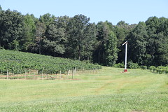 IMG_9111 (UGA CAES/Extension) Tags: vineyard wine winery stonepilevineyard viticulture viticultureteam northgeorgia winecountry ugacooperativeextension uga extension grapes ugaextension cainhickey
