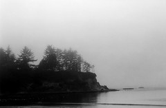 Sunset Bay in the Fog (bac1967) Tags: fujifilm fuji acros fujifilmacros fujifilmacros100 620film 620 120film 120 mediumformat kodakmedalist kodak medalist rangefindercamera rangefinder beerenol beerol beer beerfilmdeveloper pabstblueribbonbeer pabst fog foggy pacificnorthwest pacific pnw pacificcoast coosbay oregon or ocean sea blackandwhite blackandwhitefilm blackwhite monochrome monotone panfilm panchromatic bw caffenol grain trees point sunsetbay sunsetbaystatepark capearago