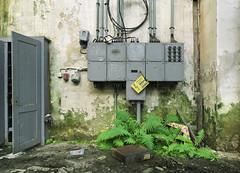 Spinnerei/Zwirnerei (2) (david_drei) Tags: fern farn lostplace abandoned decay derelictbuildings