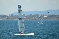 800_4663 (Lox Pix) Tags: queensland qld australia woodypoint hyc humpybongyachtclub winterbash foiling foilingcatamaran catamaran trimaran loxpix bramblebay boats
