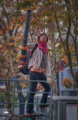 Going into Battle (allentimothy1947) Tags: hdr taichung taiwan activities automn blower blowing climbing equipment fall jeans leaf machine scarf shirt shoes trees truck woman leaves leafblower work