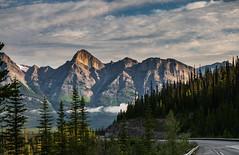 North Saskatchewan, Icefield Parkway, Jasper (marvhimmel) Tags: general jaspernationalpark montana flatheadlake canada bristishcolumbia