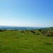 2018-05-18 06-02 England 761 Ilsington, Dartmoor, Haytor