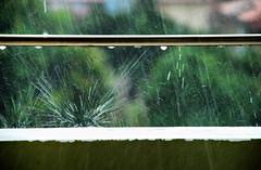 Here comes the rain again (jimiliop) Tags: rain drops splash motion water summerrain