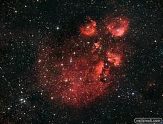 Cat's Paw Nebula (neilcreek) Tags: astronomy astrophotography milkyway space galaxy stars nebula cosmos universe nightsky universetoday nightscaper science nightscape stargazing milkywaychasers starrynight astrophoto milkywaygalaxy longexposure nightphotography nightimages nightshooters igastrophotography skymasters catspaw ngc6334