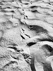 Mountains beyond mountains (butterinfly) Tags: marks tracks blackandwhite sandmountains beach desert sand