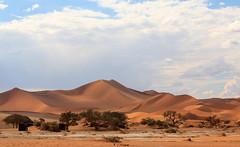 Sossusvlei (in Explore) (Martin de Lusenet) Tags: 2018 namibië africa sossusvlei dunes sand red orange desert namib greatphotographers