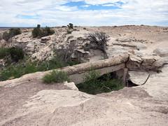 pfpd053bridge (invisiblecompany) Tags: 2018 travel usa nationalpark arizona petrifiedforest