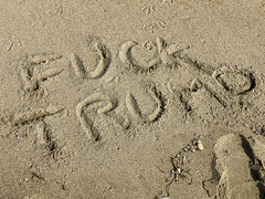220/365  Fuck Trump in sand at Moss Landing