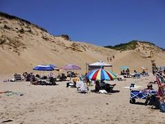 DSCF3192, Beach at Cape Cod, July 2018 (a59rambler) Tags: beach massachusetts capecod