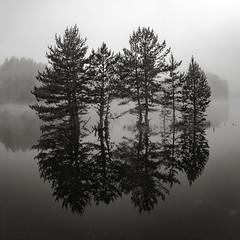 _SAM2818 (Apostol Dragiev) Tags: rodopimountain rodopi dam beglikdam beglik beglika malakbeglik lake morning родопи малъкбеглик беглика