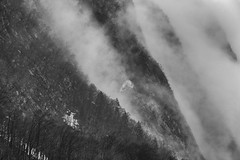 0798 Misty Mountain Layers (Hrvoje Simich - gaZZda) Tags: outdoors noperson mountain fog misty layers forest trees julianalps slovenia europe travel nikon nikond750 nikkor283003556 gazzda hrvojesimich