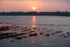 Sunset over Kerala backwaters (nick taz) Tags: sunset dusk kerala india water backwaters