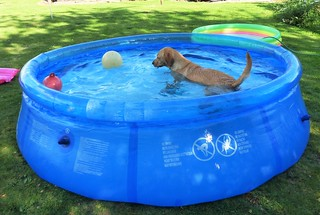 Pool Party! ..x