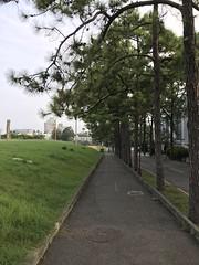 Silence morning (光輝蘇) Tags: 清華大學 university morning kk