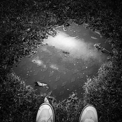 Reflections of an Icon (Dan Portch) Tags: battle britain memorial spitfire reflection reflections puddle mobile phone photography samsung galaxy s8 plus garden plane airplane fine art mono monochrome fighter