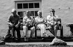 Just watching (Geordie_Snapper) Tags: boscastlevillagecentre canon5d4 cornwall holidayboscastle june street summer