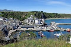 LUARCA (17) (mflinera) Tags: luarca asturias paisaje mar barcos puerto
