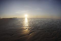 _MG_1297 (hiocolena) Tags: zee sun merdunord belgique couchersoleil fisheyes