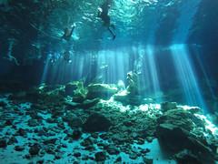 Cenotes in Yucatan in Mexico