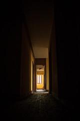 Château Poséidon (Fla(v)ie) Tags: urbex abandonné abandoned abandonedcastle châteauabandonné châteauposéidon châteaudulaitier château castle châteaurodneyalcala couloir lumière light hallway yellow jaune