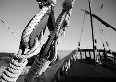 Tierra a la vista! (.Guillermo.) Tags: bw blackandwhite blancoynegro blanco negro mar sea barco sailing